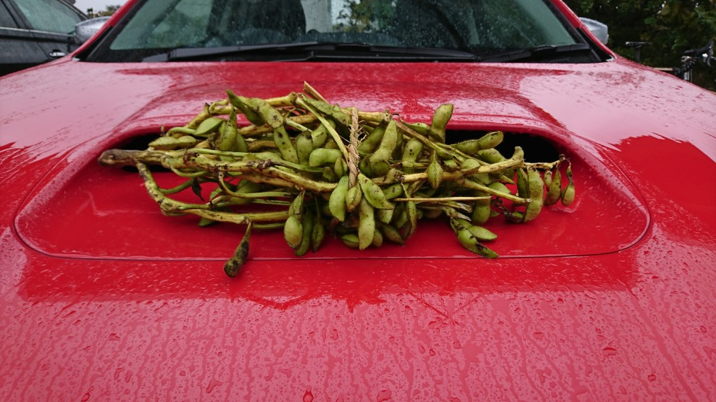 賞品の枝豆
